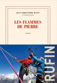 Les flammes de pierre | Rufin, Jean-Christophe. Auteur