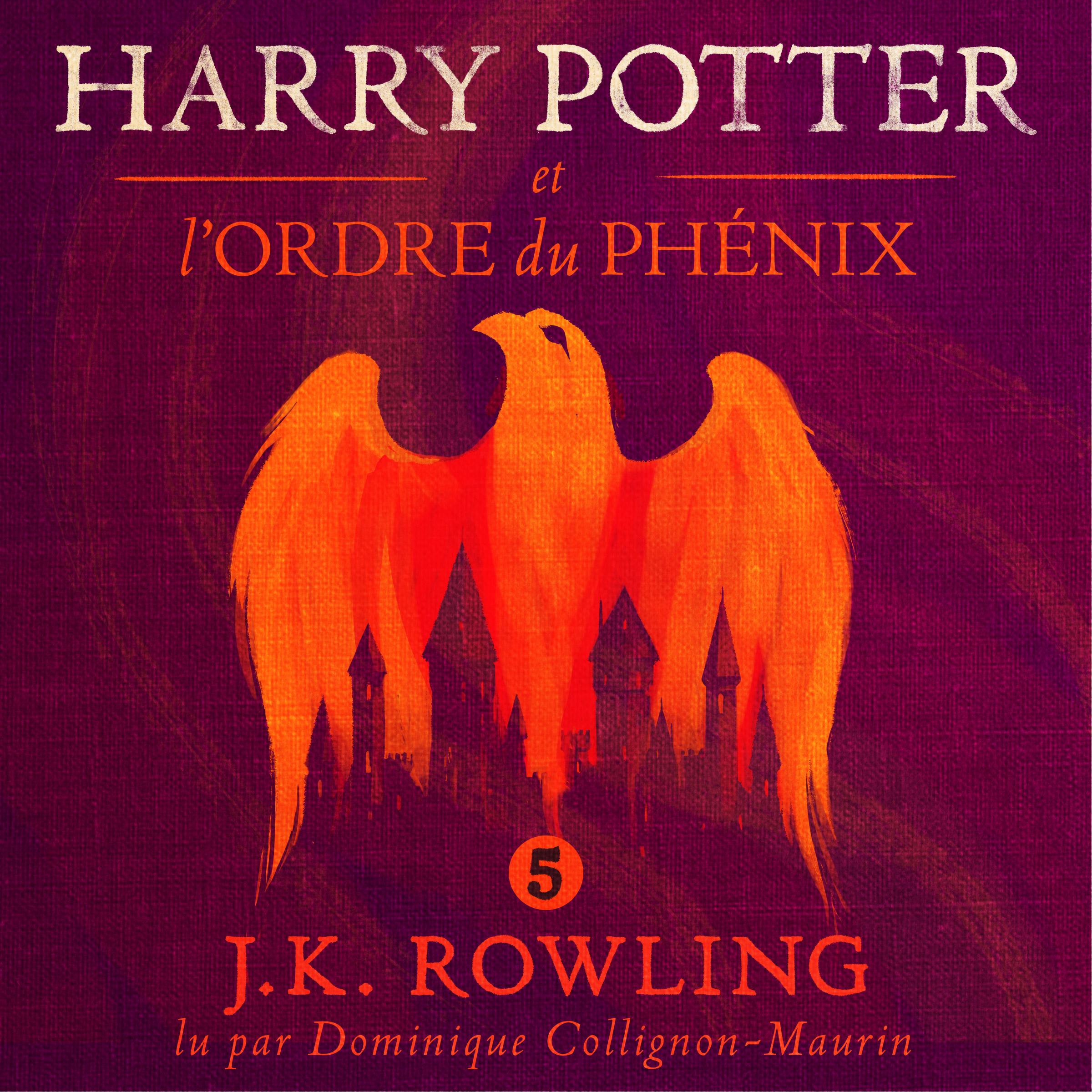 Harry Potter et l'Ordre du ...