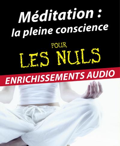 Méditation : la pleine conscience Pour les Nuls | ALIDINA, Shamash