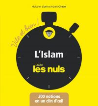 Image de couverture (L'Islam Vite et bien pour les Nuls)