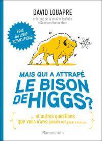 Mais qui a attrapé le bison de Higgs ? : et autres questions que vous n'avez jamais osé poser à haute voix...